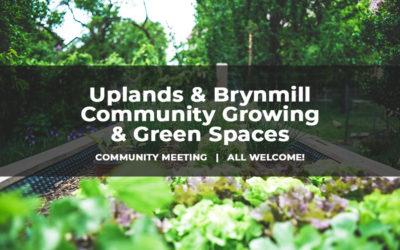 Community Growing Meeting